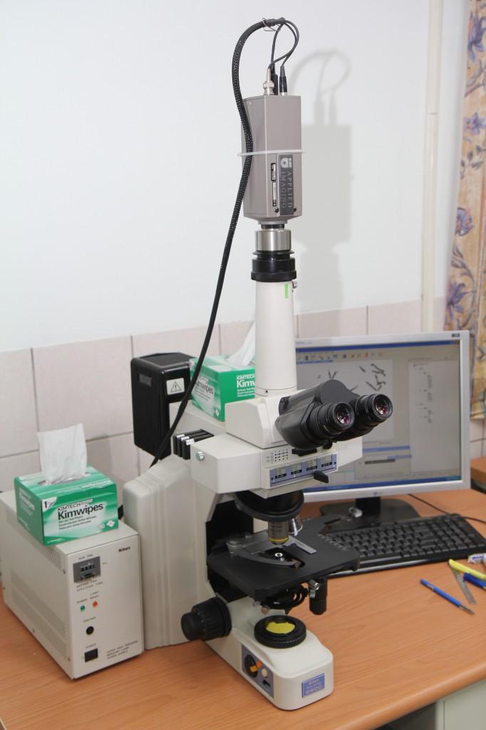 染色体分析实验室